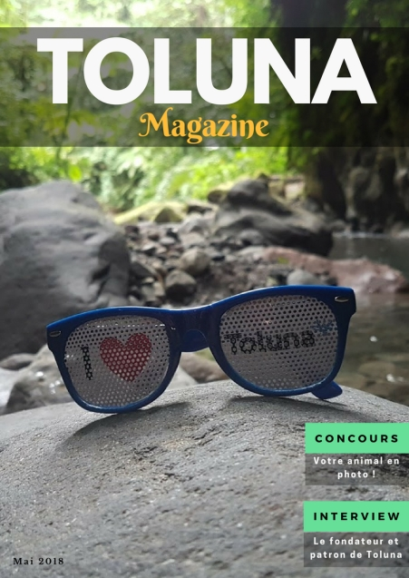 FR Toluna News - Cover